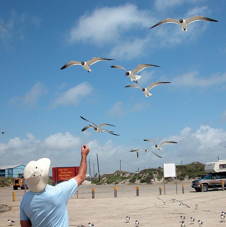 Mustang Island Beach: Weekend Travels
